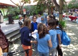 Lycée Français de Singapour 12