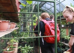 Visiting Green House