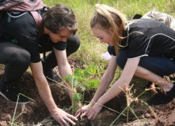 Planting tree as the symbol of friendship
